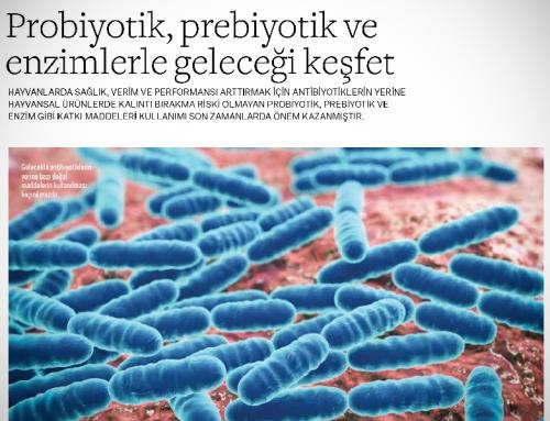 Infovet: Probiyotik, Prebiyotik ve Enzimlerle Geleceği Keşfet